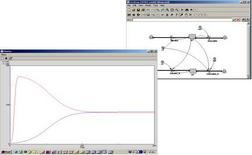 Il modello in Simile e i risultati della simulazione