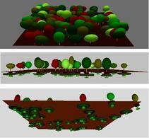VRML del modello di dinamica della vegetazione