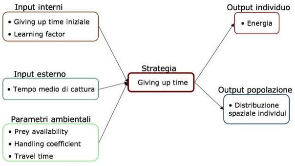 Il modello permette di indagare diversi processi e di definire diversi scenari di simulazione