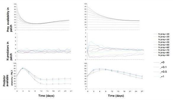 Scenari di simulazioni in funzione del numero di prede e del fattore di apprendimento