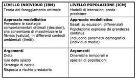Approcci IBM e CM per modelli consumatori/risorsa