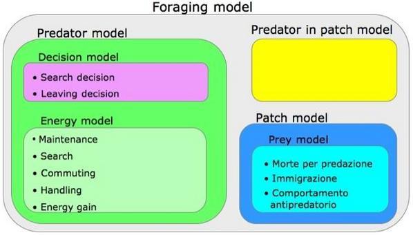 La struttura del modello e dei sottomodelli