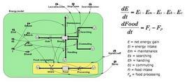 Lo schema del sottomodello energetico
