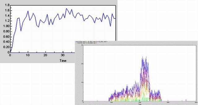 Esempi di simulazioni del modello, fase necessaria per capire e testare il comportamento del modello