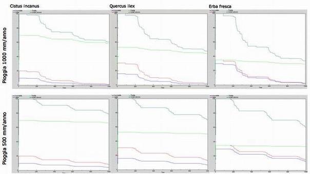 Dinamica di decomposizione di un esperimento di litter bag della durata di circa 3 anni confrontando 3 specie
