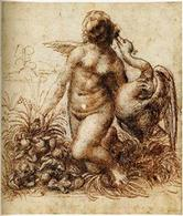 Leonardo, Leda e il cigno. Fonte: Wikipedia