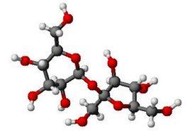 Molecola di saccarosio. Fonte:  Wikipedia