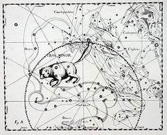 Polare – L'orsa minore. Fonte: Wikipedia