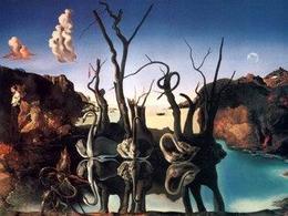 Salvador Dalì, Cigni che riflettono elefanti. Fonte: Gallery Giovani