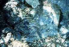 Stromatoliti. Fonte: Wikimedia Commons