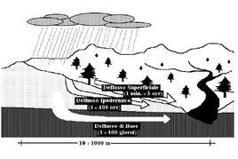 Tempi di ritardo, rispetto alla precipitazione, dei diversi tipi di deflusso in arrivo alla rete idrografica