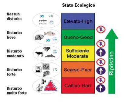 D.L. 152/2006 Stato Ecologico dei Corsi d'Acqua