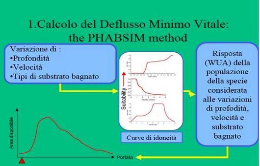 Procedura PHABSIM: calcolo della curva ADP(Q)