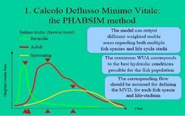 Procedura PHABSIM: calcolo della portata ottima