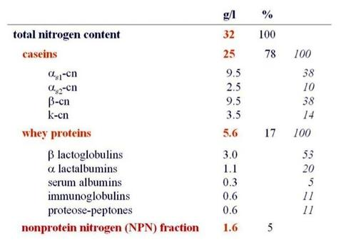 Proteins composition of cow's milk.
