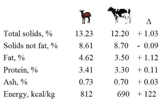 Differences between goat and bovine milk.