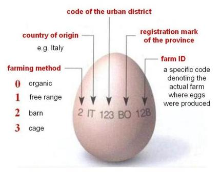 Codes used for egg traceability.