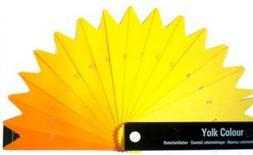 Yolk colour fan. From: INVE advanced solutions for animal rearing.