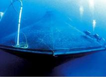 Example of submerged cage. From:  Food and water watch