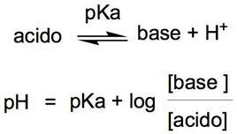 Equazione di Henderson-Hasselbach.