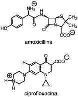 Amoxicillina e ciprofloxacina nello stato di zwitterioni.