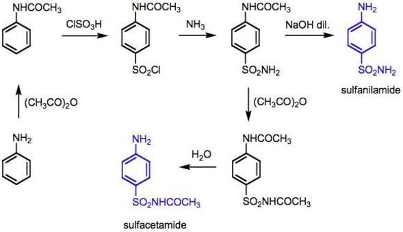 Sintesi della sulfanilamide e della sulfacetamide a partire dall'anilina. Il commento alla sintesi è riportata nella diapositiva successiva.
