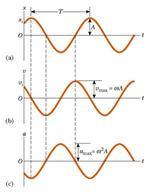 Figura 3.12. Rappresentazione grafica della (a) posizione, (b) velocità e (c) accelerazione.