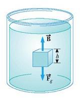 Figura 6.3. Forze agenti su un corpo immerso (figura 15.8 in Jewett & Serway).