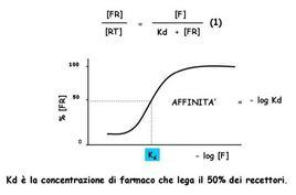 Fig. 3 Effetto della concentrazione sull'entità del farmaco legato al recettore