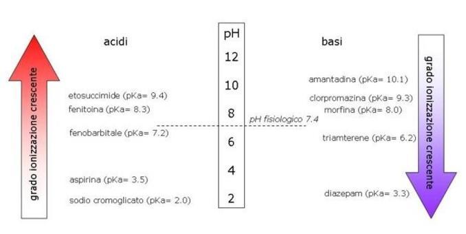 Fig. 5 La ionizzazione di acidi cresce in ambiente basico, la ionizzazione di basi aumenta in ambiente acido