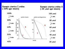 Fig. 1 Andamento nel tempo delle concentrazioni plasmatiche.