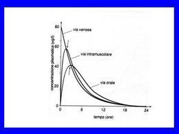 Fig. 6 Andamento temporale delle concentrazioni plasmatiche.