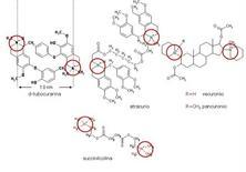 Fig. 10 In tutte le strutture vi sono due atomi di N quaternarizzati