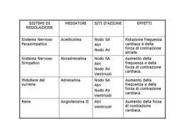 Tabella 1 Sistemi di regolazione dell'attività cardiaca.