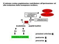 Fig. 9 Implicazione patologiche dell'angiotensina II.