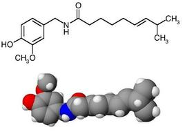 Struttura chimica della capsaicina. Fonte: Wikipedia