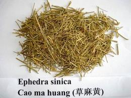 Ephedra sinica (droga). Fonte: Asia herbs