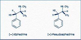 Efedrina e pseudoefedrina. Fonte: Botanical Dermatology Database