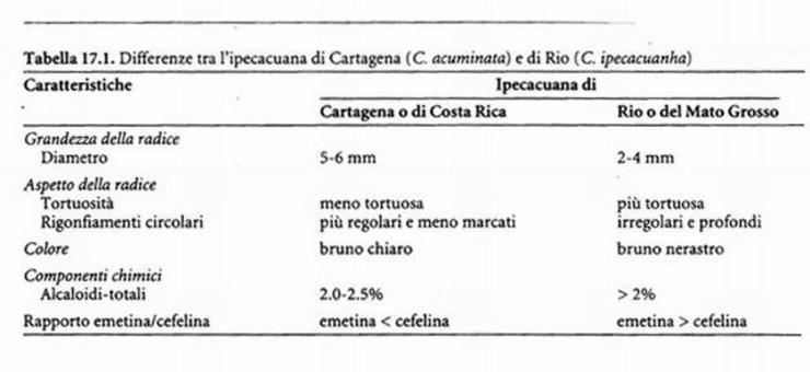 Differenze tra ipecacuana di Cartagena e di Rio, da Capasso et al. Farmacognosia, Springer, 1999