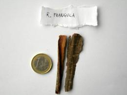 Rhamnus frangula (Corteccia). Fonte: Capasso/Grandolini/Izzo, Fitoterapia, Springer, 2006