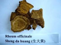 Rheum officinale. Fonte: Chinese herbs medicine