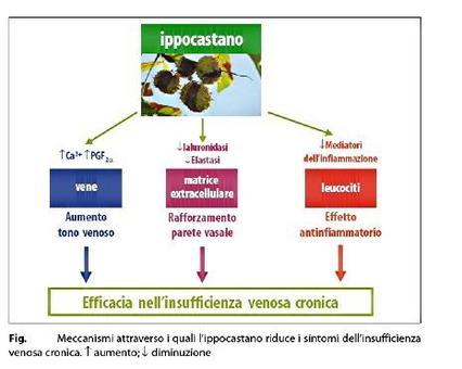 Azioni dell'ippocastano. Fonte: Capasso/Grandolini/Izzo, Fitoterapia, Springer, 2006