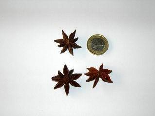 Illicium verum (frutti). Fonte: Borrelli/Capasso/Izzo