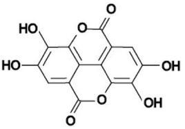 Acido ellagico