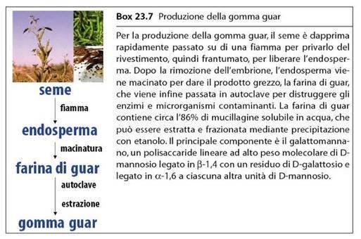 Produzione della gomma guar. Fonte: Capasso/Grandolini/Izzo, Fitoterapia, Springer, 2006