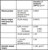 Densità dei diversi componenti corporei,  Da: Brozek et al., 1963 e Wang et al., 1992.