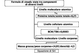 Esempi di formule di steady-state tra componenti di livelli differenti.