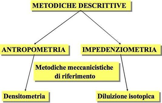 Esempi di metodiche descrittive con le rispettive metodiche meccanicistiche di riferimento