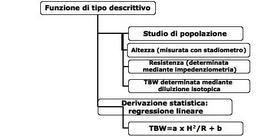 Esempi di formule con funzione descrittiva per derivare l'acqua totale corporea con l'impedenziometria
