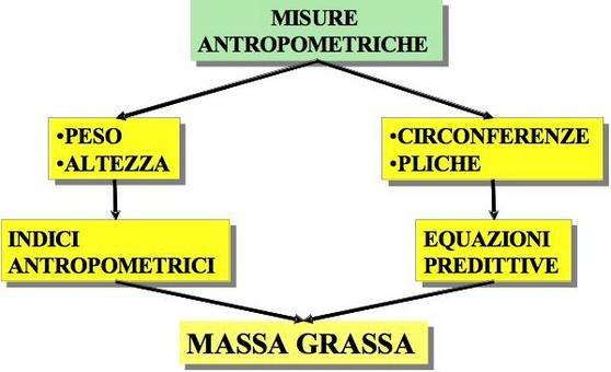 Metodiche antropometriche
